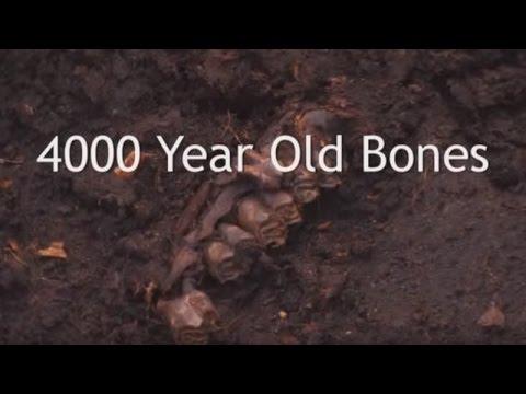 4000 Year Old Bones - YouTube