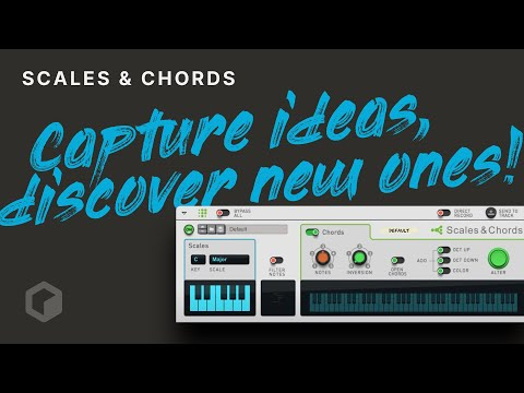 Scales & Chords: Capture Ideas, Discover New Ones!