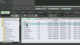 Samplitude 11 Pro/Sequoia 11-BPM Loop Synchronization