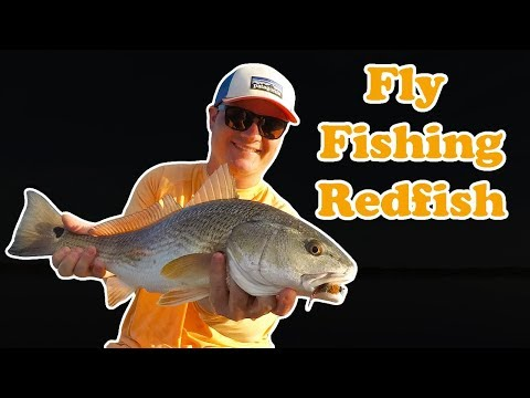 FLY FISHING REDFISH | Mosquito Lagoon, FL