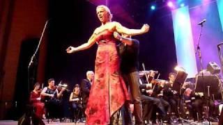 Malena Ernman tappar klänningen