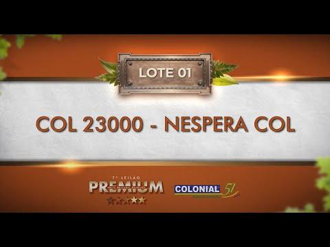 LOTE 01   COL 23000