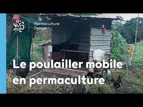 permaculture un exemple de poulailler mobile youtube. Black Bedroom Furniture Sets. Home Design Ideas