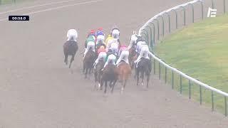 Vidéo de la course PMU PRIX ARTUS