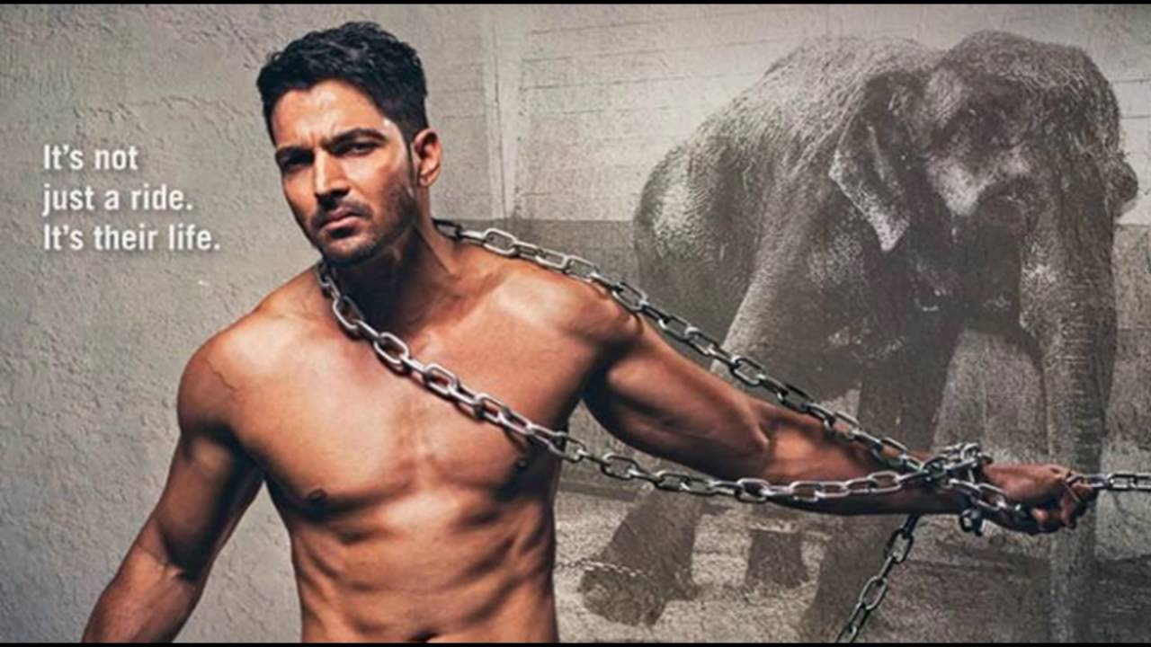 Image result for harshvardhan rane shirtless