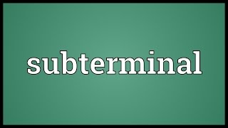 Subterminal Meaning