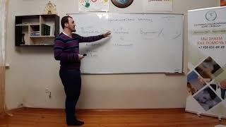 Трансактный Анализ Раджабов Шамиль