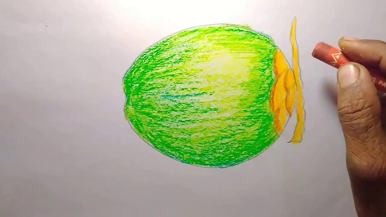 How To Draw A Green Coconut Step By Tutorial For Kids