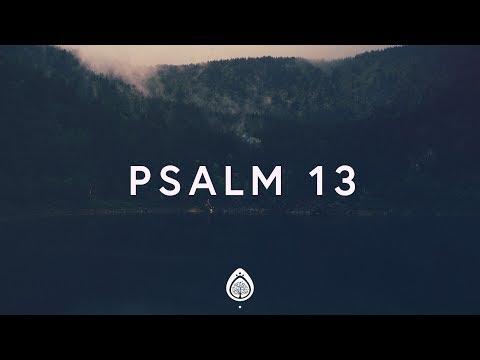 Alisa Turner ~ Psalm 13 (Lyrics)