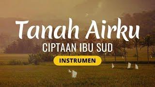 Gambar cover TANAH AIRKU (Lagu Wajib Nasional)