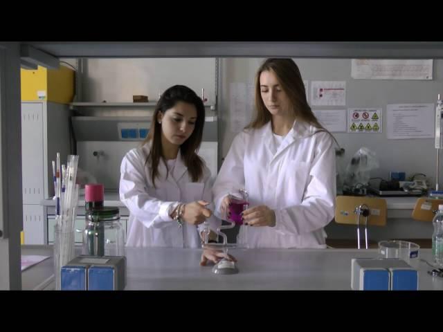 Progetto Erasmus 2014   2016   Water formula Clues