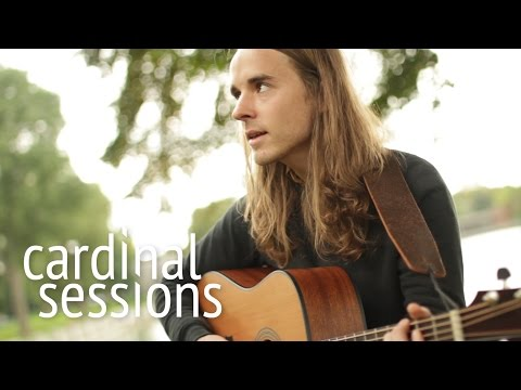andy-shauf---covered-in-dust---cardinal-sessions