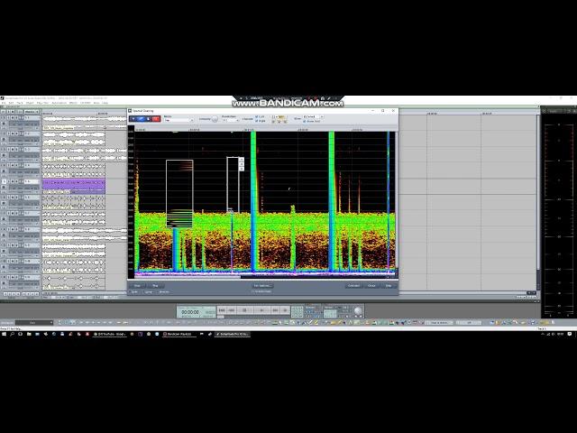 Samplitude/Sequoia Spectral edit