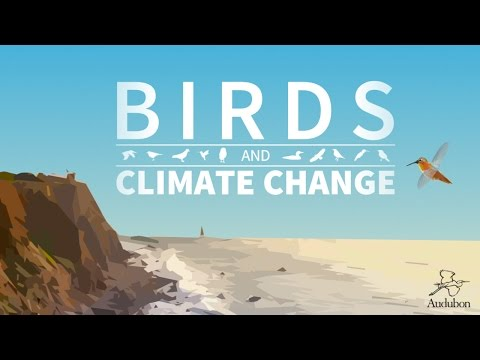 Climate Change and Birds