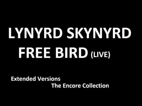Lynyrd Skynyrd - Free Bird (live extended version)