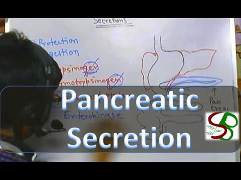 Pancreatic enzymes - pancreatic juice