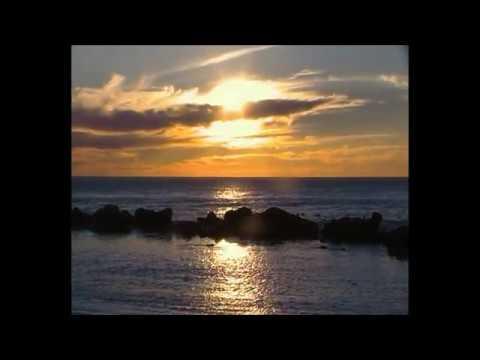 Strandfontein deur Michiel Visser