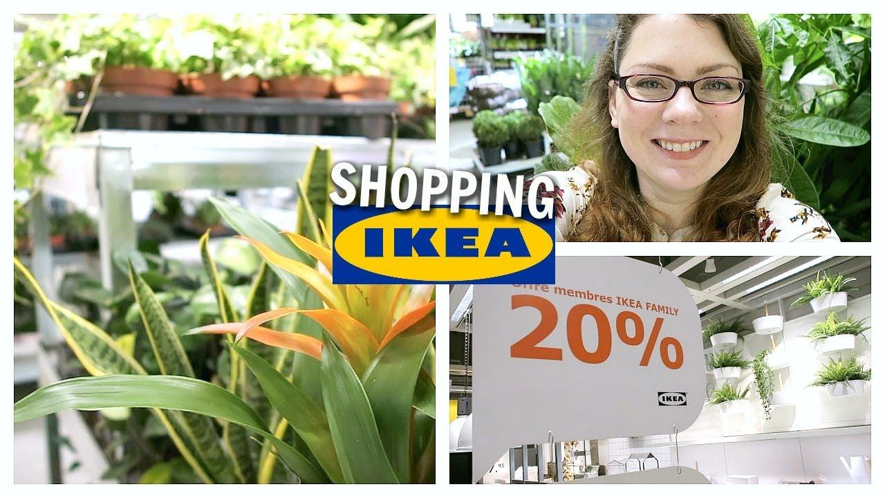 shopping vlog toutes les plantes d interieur en promo action chez ikea ikea shopping 9