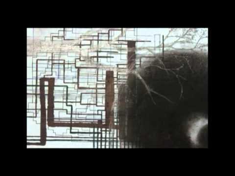 David Thomas Broughton - 'Perfect Louse' (OFFICIAL VIDEO)