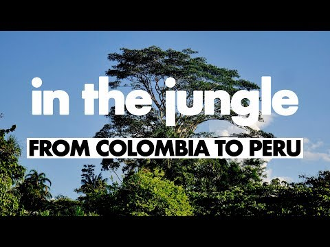 In The Jungle - A Journey From Leticia To Iquitos