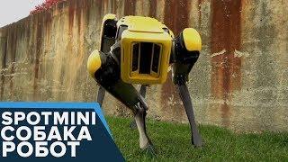New SpotMini - СОБАКА-РОБОТ - НЕВЕРОЯТНО! Boston Dynamics (eng sub)