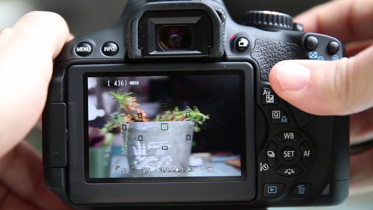 Canon T4i 650D Live view options and Focusing Tips