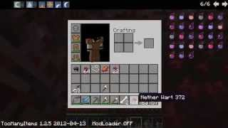 [GRG]Minecraft Co-op P.3