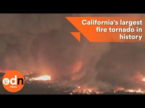 Footage of California's largest fire tornado in history