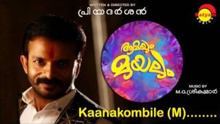 Kaanakombile (M) - Aamayum Muyalum