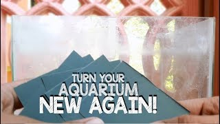 Best Ways to Remove Calcium Build-up / Watermarks  in aquarium glass