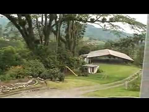 FINCA CAFETERA EN CHINCHINA-CALDAS-COLOMBIA Videos De Viajes