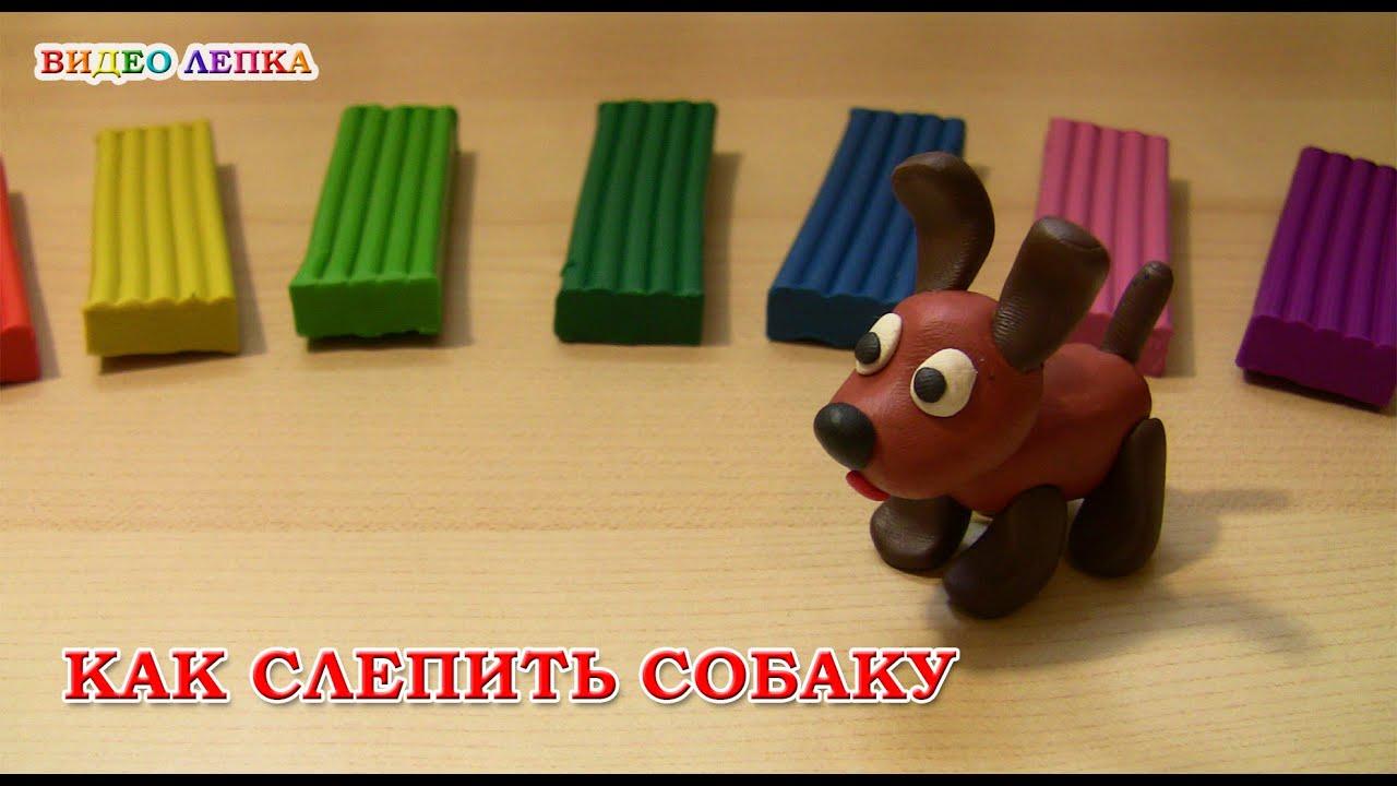 Продажа собак. В сервисе объявлений olx. Ua украина можно быстро и недорого купить щенка. Заведи преданного породистого друга прямо сейчас!