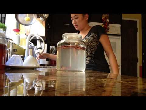 How I made Water Kefir-a Probiotic Drink
