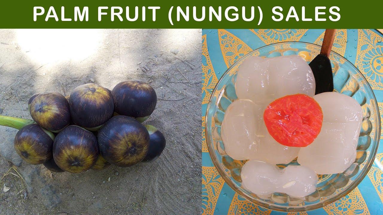 Palm fruit (Nungu or Ice Apple) sales