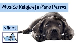 3 Hours! Relax My Dog - the world's best and only dog music!