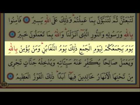 Surah At-Taghabun(64) by Nasser Al Qatami Majestic Recitation(Tegabün)