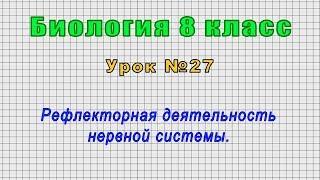 Биология 8 класс (Урок№27 - Рефлекторная деятельность нервной системы.)