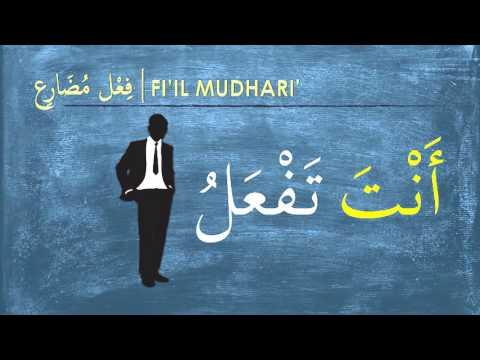TASRIF FEEL MUDHARI'