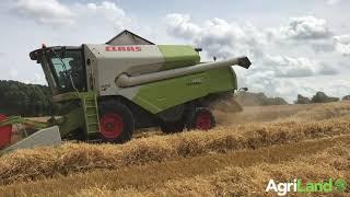 Harvesting malting barley in Co. Laois