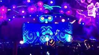 night owl experience edc las vegas 2013 1080p