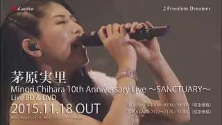 茅原実里のデビュー10周年を記念して、2014年11月18日に日本武道館にて...