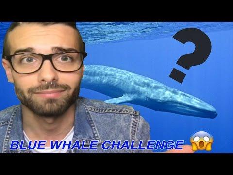 ECCO TUTTE LE 50 REGOLE DELLA BLUE WHALE CHALLENGE!