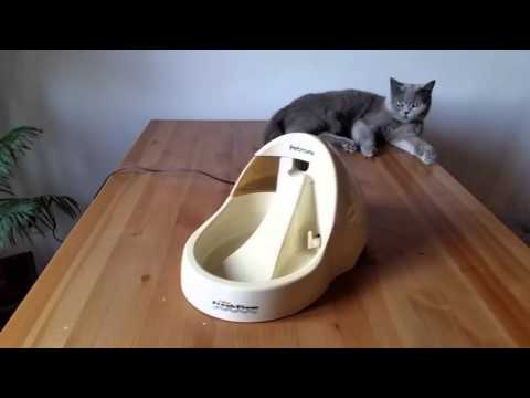 Fontanna dla Kota - Czy Wasze Kotki Korzystają?
