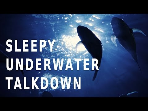 Guided meditation - Deep sleep diving   The relaxation hypnosis submarine
