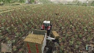 Automatyczna Przyczepa na Bele E27 | Farming Simulator 19