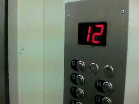 2 Windy SUAiD / 2 Elevators SUAiD
