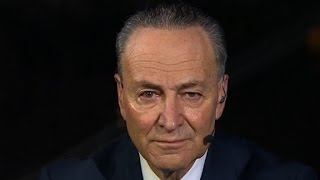 Schumer  Trump cabinet selection a disaster