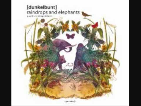 dunkelbunt - the rain