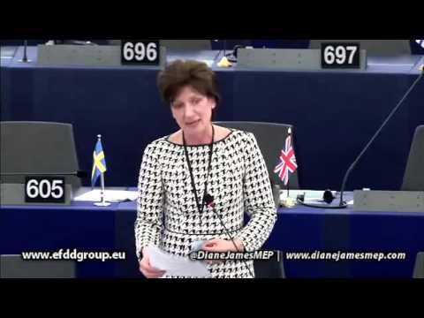 EU has no competency to address protection of trade secrets - Diane James MEP