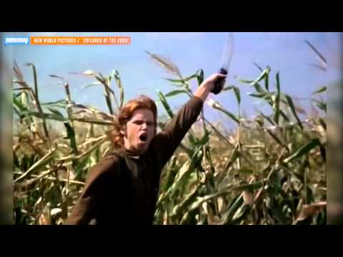 What Not To Do In A Corn Maze